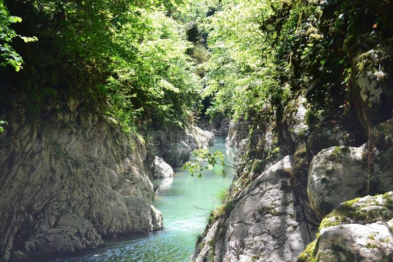 Um rio em uma garganta da montanha imagens de stock