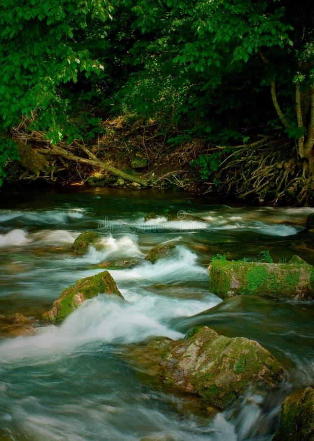Um Rio Missouri fotografia de stock royalty free