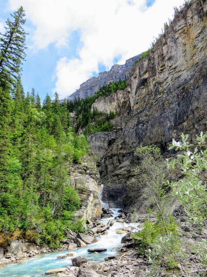 Um rio movente rápido estreito que corre para baixo com uma elevação íngreme do vale nas Montanhas Rochosas ao longo da fuga  imagem de stock
