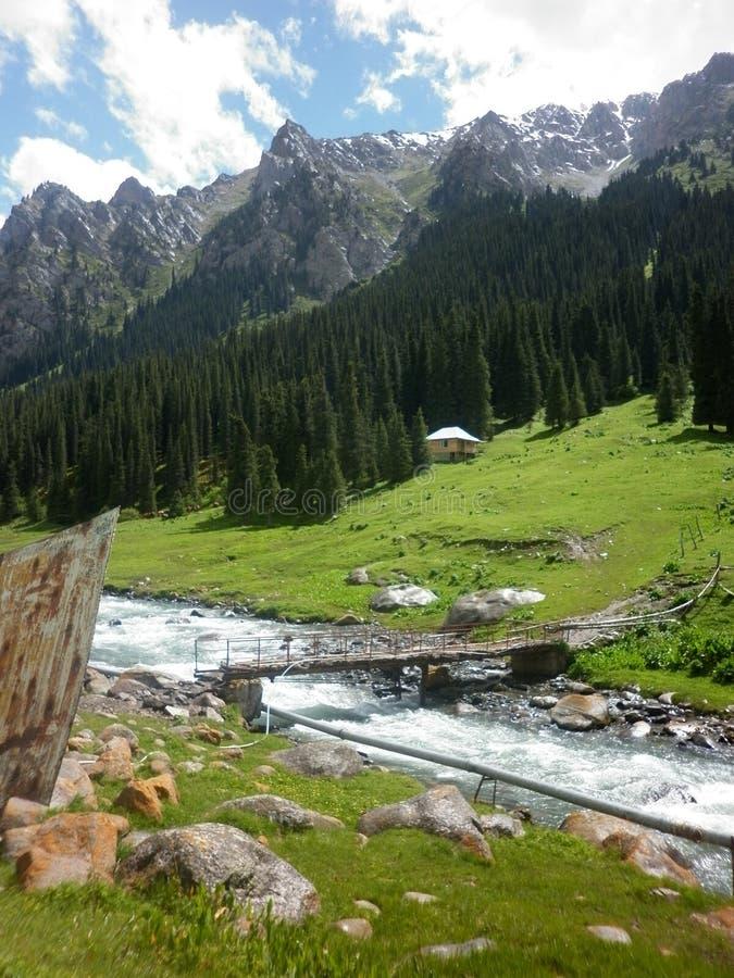 Um rio nas montanhas fotos de stock