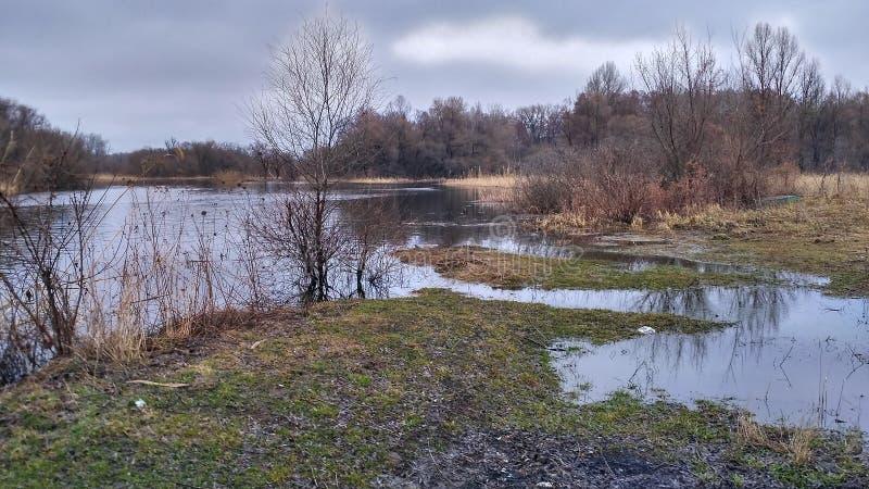 Um rio para pescar na natureza fotografia de stock