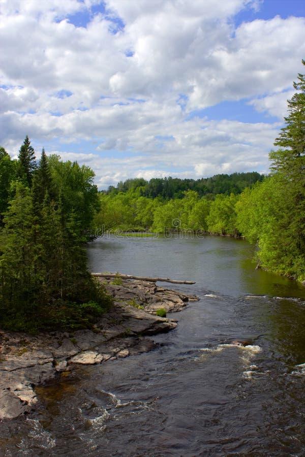Um rio pequeno com alguma corredeira fotografia de stock royalty free