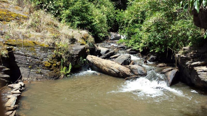 Um rio pequeno na cidade de Trovolhue - o Chile imagem de stock
