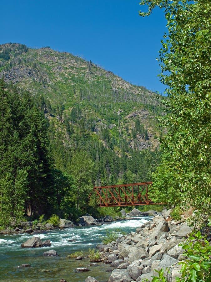 Um rio que corre através de uma floresta da montanha fotografia de stock