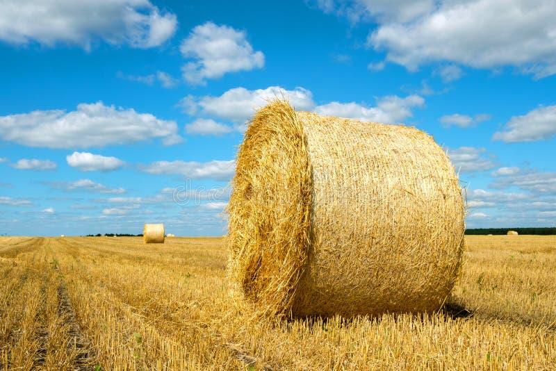 Um rolo de feno através do campo, seguido de um horizonte distante e céu azul foto de stock