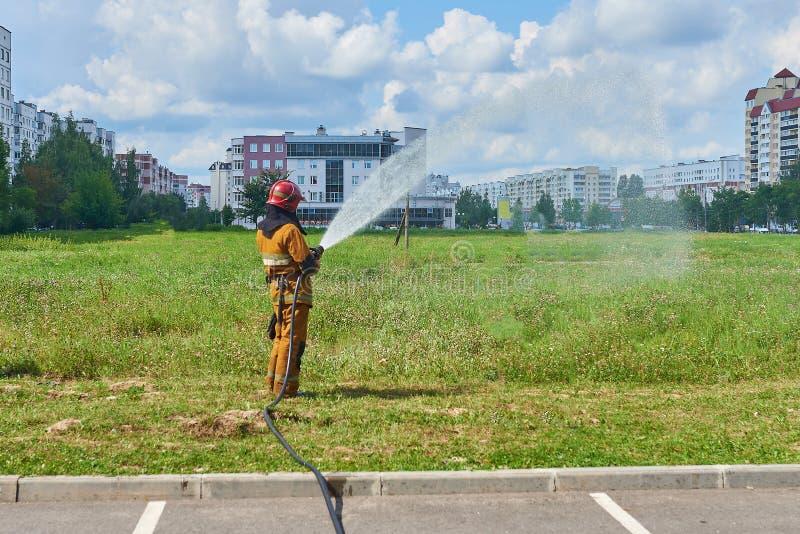 Um sapador-bombeiro do homem de uma mangueira de fogo que molha a grama fotografia de stock royalty free