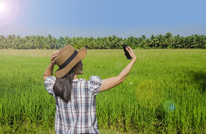 Um selfie asiático da senhora sua fotografia com o campo do arroz e da palma no fundo fotografia de stock royalty free