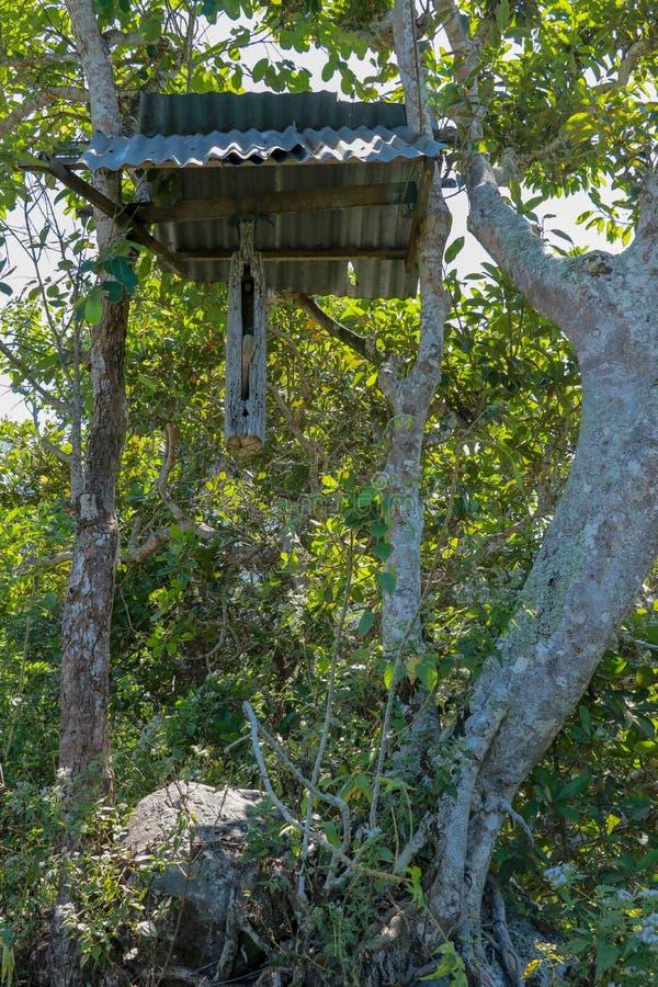 Um sino de madeira com um malho feito de um tronco de árvore pendurou em um feixe entre árvores na ilha de Bali Os hindus do Bali fotos de stock