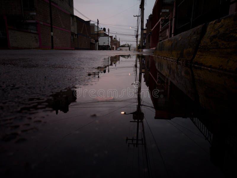 Um sunrice após a chuva fotos de stock royalty free