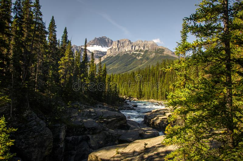 Um Sunwapta-Fluss in Rocky Mountains gehen, Jasper National Park, Alberta, Kanada stockbilder