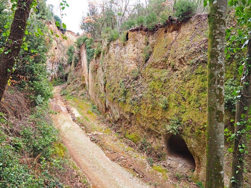 Um túmulo da caverna na parede da através de oco, uma estrada antiga de Etruscan cinzelou através dos penhascos do tufo em Toscân fotos de stock