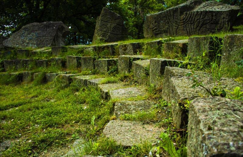 Um teatro verde na natureza imagens de stock