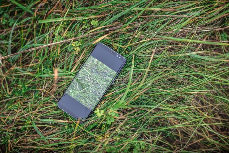 Um telefone celular perdido na grama alta fotos de stock royalty free