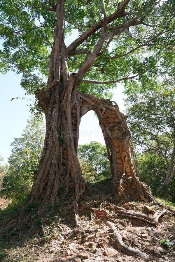Um templo arruinado em Prasat yeah Puon em Sambor Prei Kuk em Camboja fotografia de stock