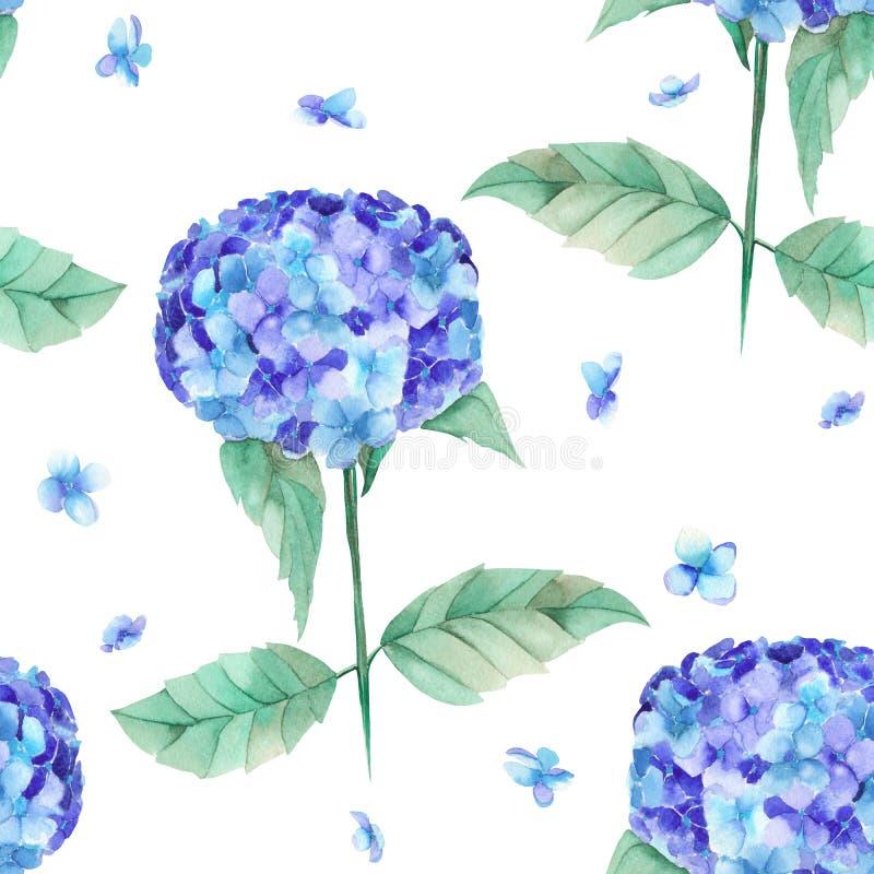 Um teste padrão sem emenda da hortênsia azul da aquarela bonita floresce ilustração do vetor