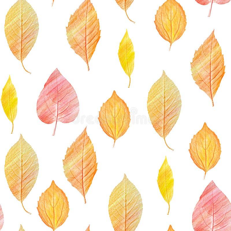 Um teste padrão sem emenda do fundo com as folhas douradas do amarelo, tonificadas imagens de stock