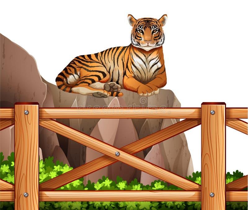 Um tigre acima do penhasco ilustração stock