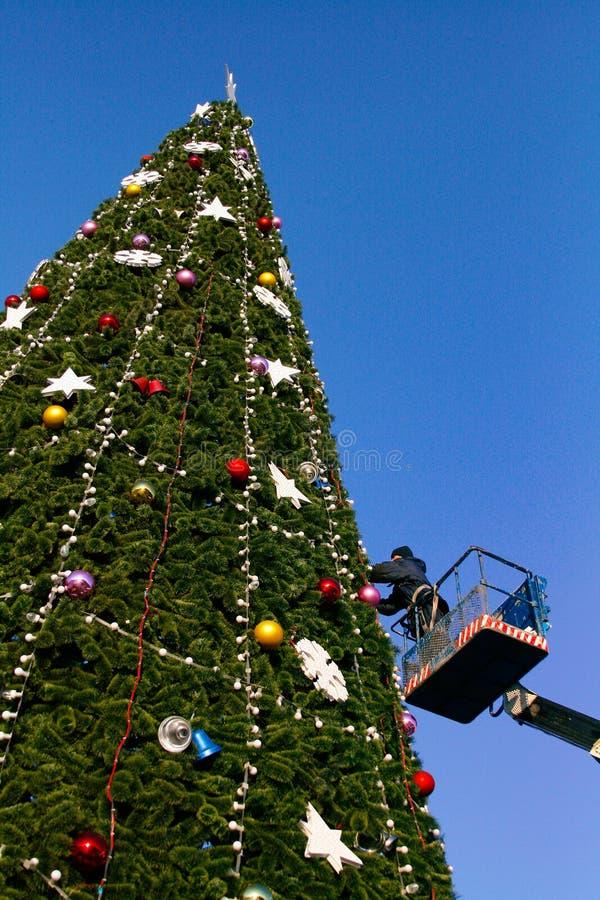 Um trabalhador decora uma árvore de Natal fotografia de stock