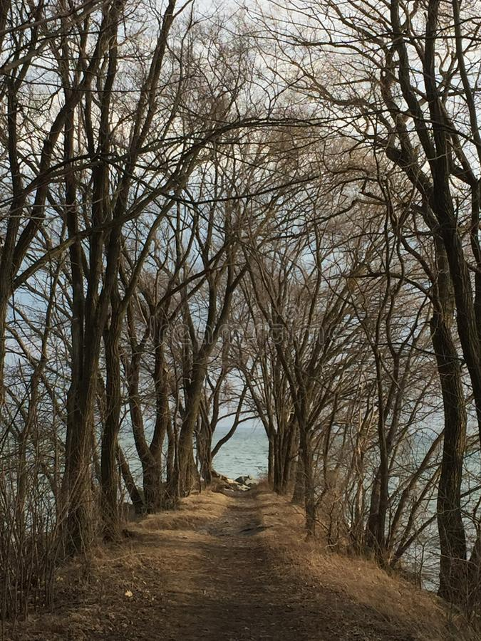 Um trajeto ? ponta do cuspe em Len Ford Park em Toronto, Ont?rio, Canad? inverno 2019 imagens de stock royalty free