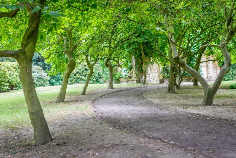 Um trajeto através das árvores que conduzem à porta fotos de stock