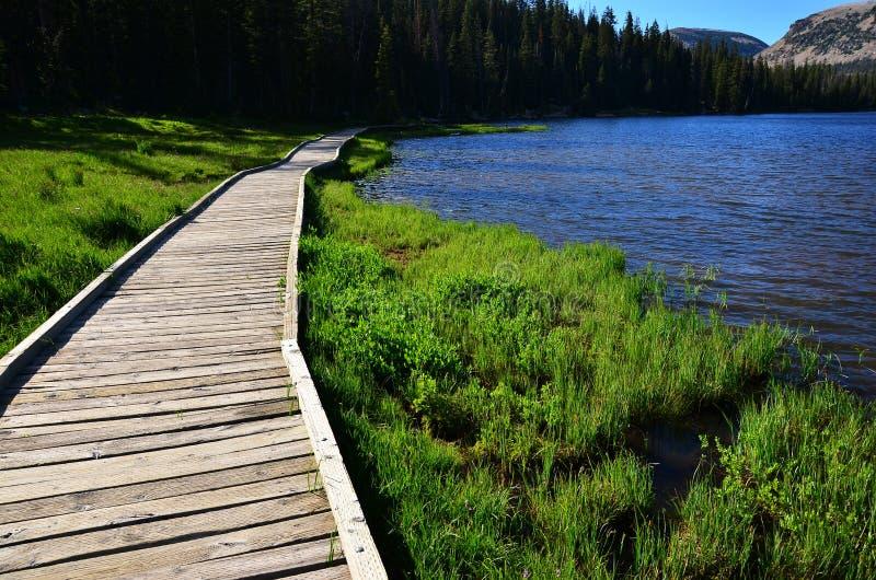 Um trajeto de passeio ao longo de um lago fotos de stock royalty free