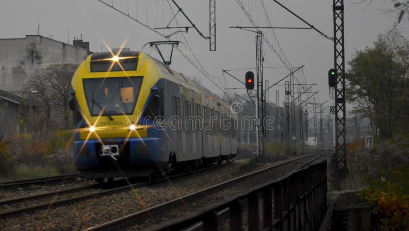 Um trem da noite que vem de uma rota longa fotografia de stock royalty free
