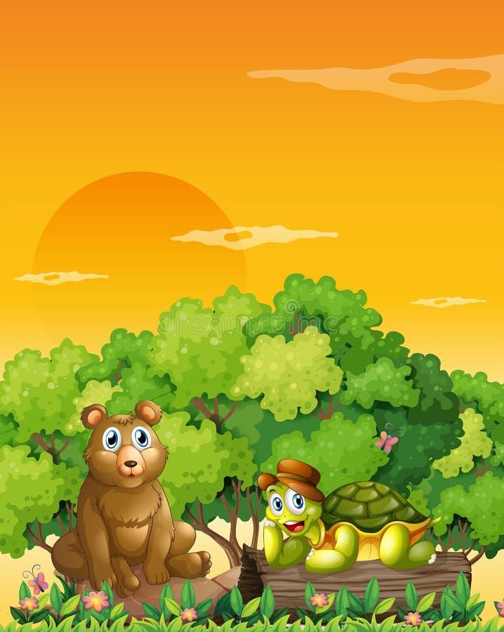 Um urso e uma tartaruga na floresta ilustração do vetor