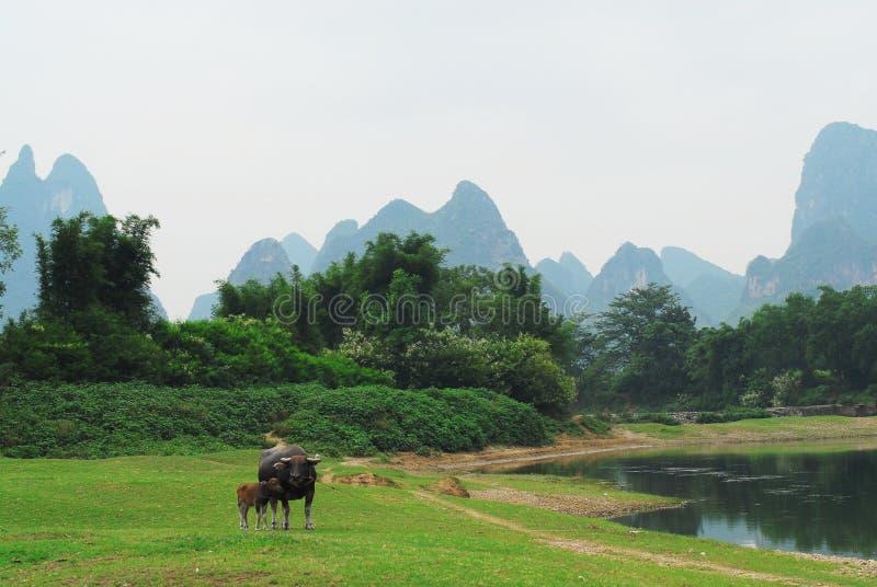 Um vale de Slient do rio de Lijiang fotografia de stock