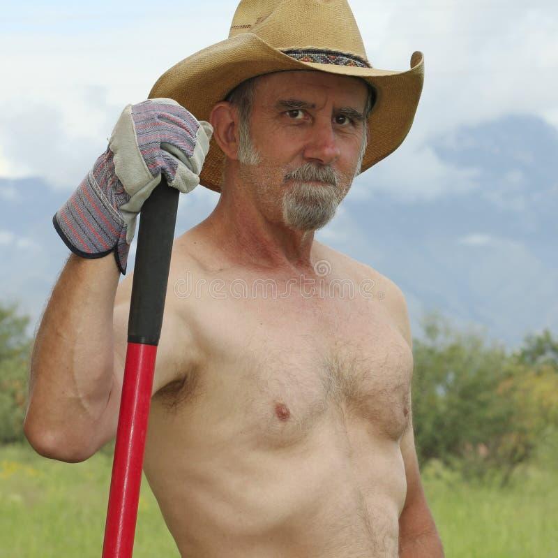 Um vaqueiro descamisado Pauses While Working no rancho foto de stock royalty free