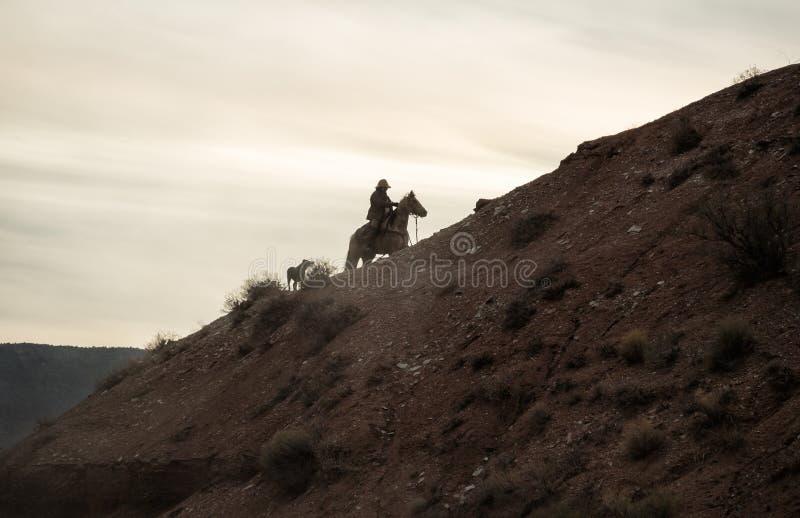 Um vaqueiro e seu cão perto do pôr do sol fotografia de stock