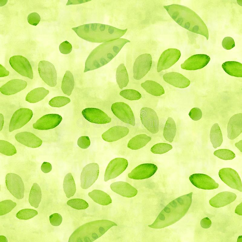 Um verde do gramado, um teste padrão sem emenda da cor do cal com os brotos da ervilha da aquarela e uns ramos com as folhas para ilustração royalty free