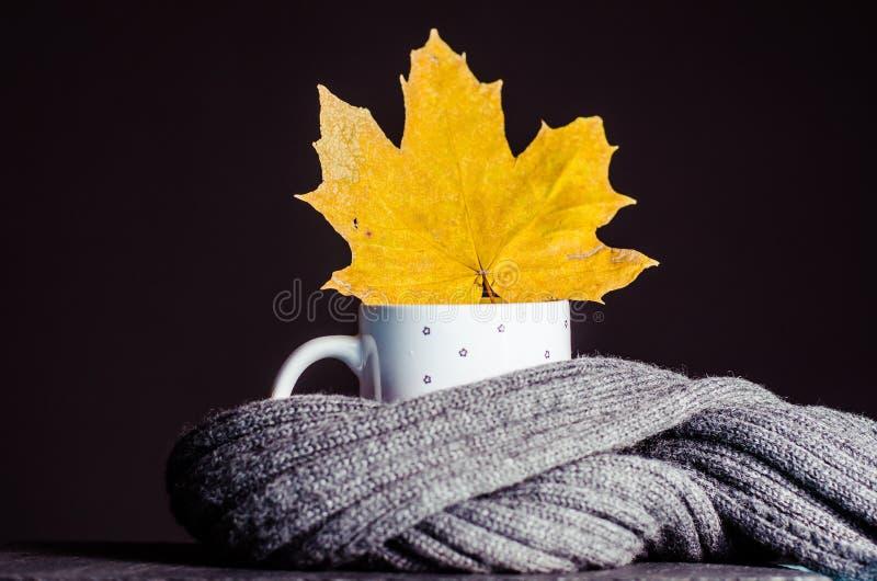 Um vidro do chá com uma folha do outono foto de stock royalty free