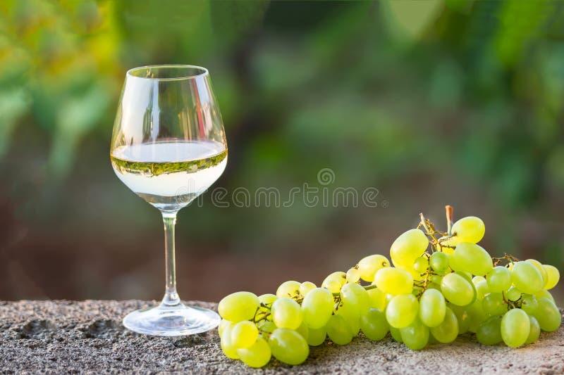 Um vidro do vinho branco e das uvas brancas fotografia de stock