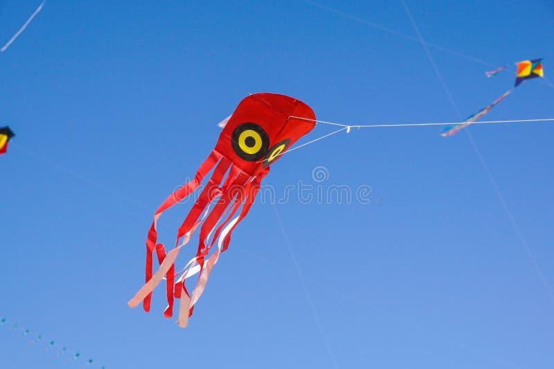 Um voo colorido do papagaio contra um c?u azul fotos de stock royalty free