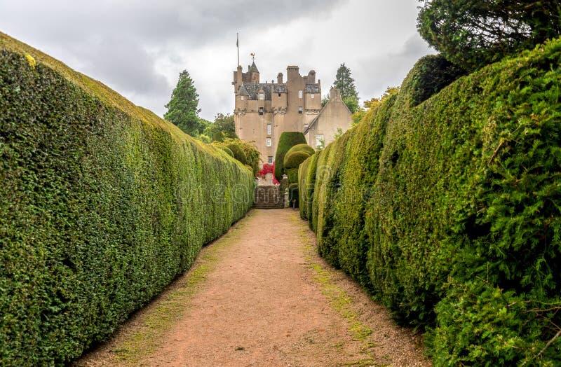 Um walkpath através dos jardins ao castelo de Crathes com as conversão verdes em ambos os lados imagens de stock