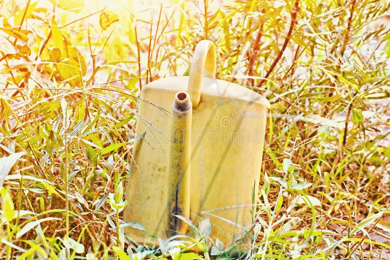 Um waterpot está no grama-plano no tempo de manhã fotografia de stock