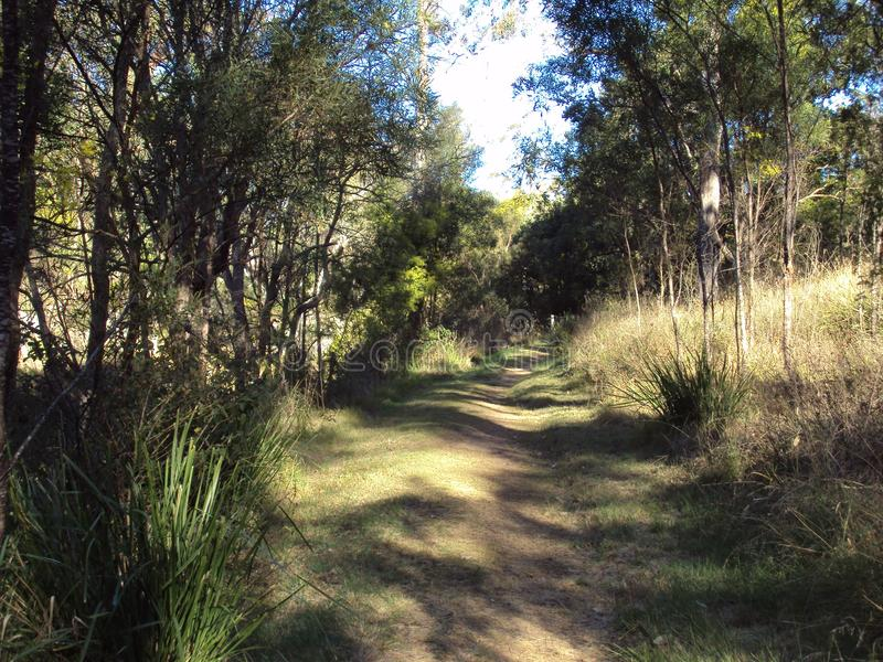Uma área do bushland natural em Austrália imagens de stock royalty free