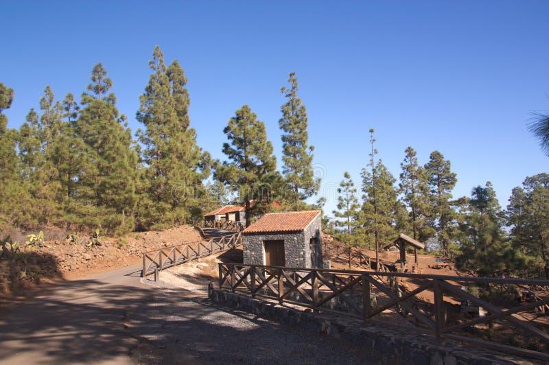 Uma área recreacional com casas e serviços na floresta imagem de stock royalty free