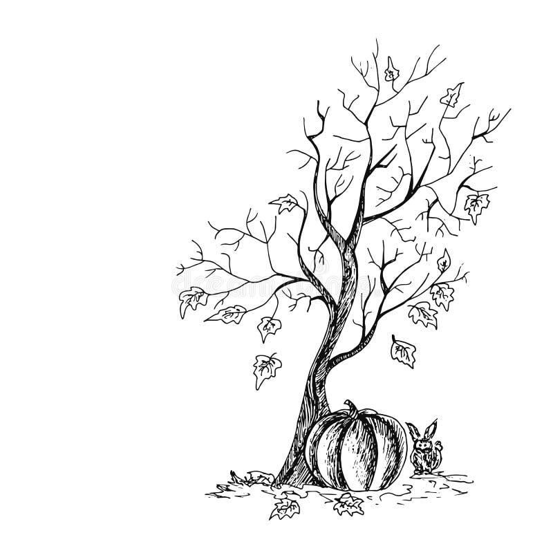 Uma árvore com uma abóbora e um coelho Halloween Feriados do outono Ilustração desenhada mão do vetor ilustração royalty free