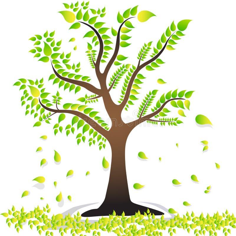 Uma árvore com as folhas verdes das folhas bonito treebroken as folhas ilustração stock