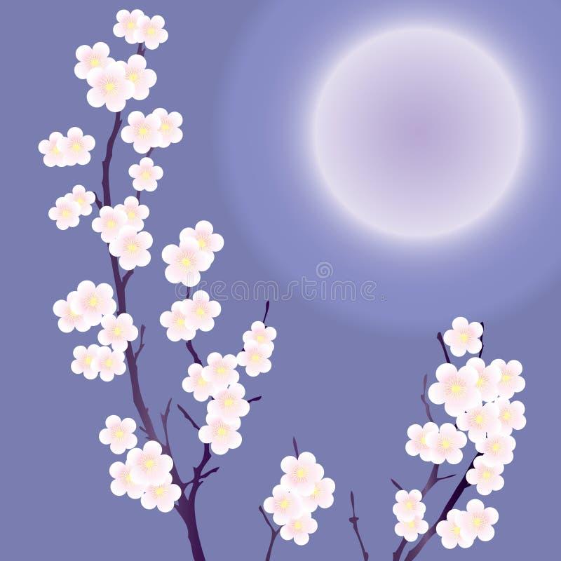 Uma árvore de florescência. ilustração do vetor