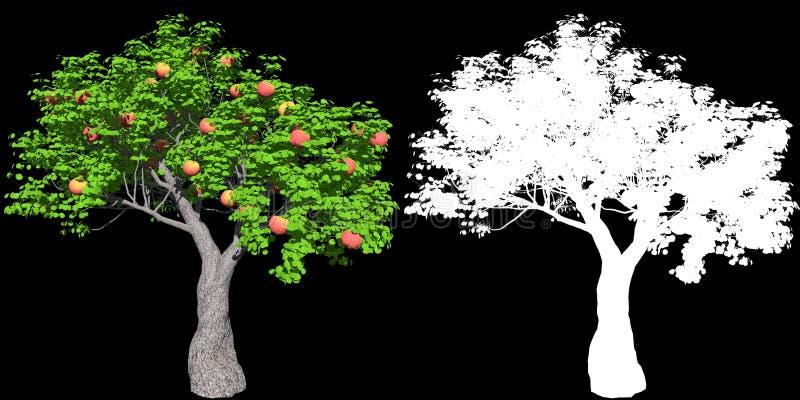 Uma ?rvore de ma?? vermelha isolada com m?scara para o isolamento f?cil do fundo, ilustra??o 3D ilustração do vetor