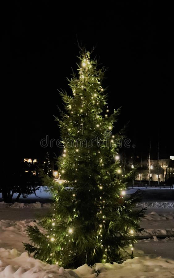 Uma árvore de Natal atmosférica foto de stock royalty free