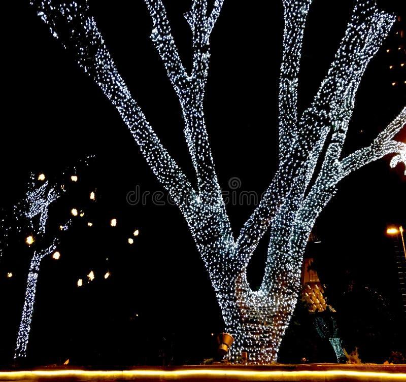 Uma árvore decorada com luzes conduzidas brilhantes na noite da Noite de Natal imagem de stock