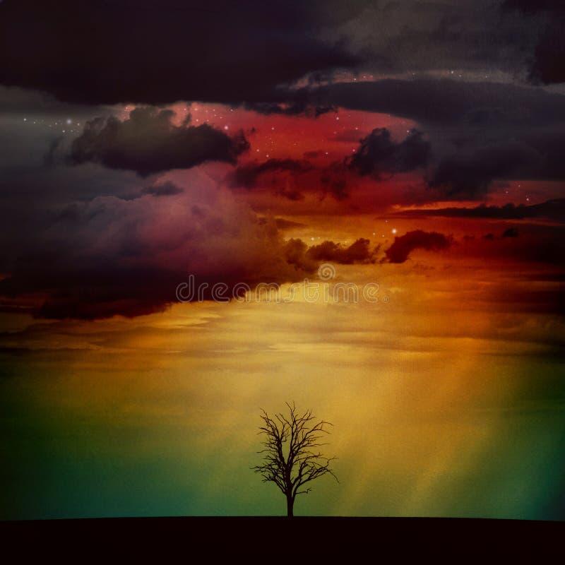 Uma árvore em um campo sob o céu noturno dramático foto de stock royalty free