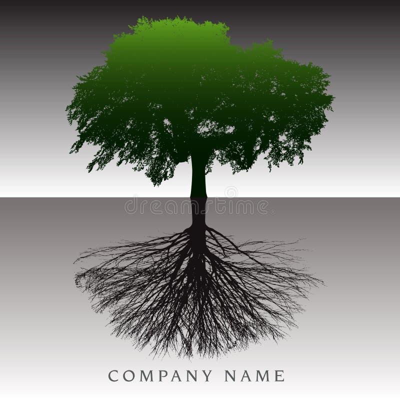 Uma árvore etéreo enraíza o fundo ilustração royalty free
