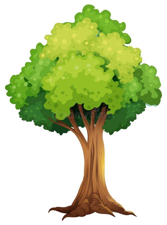 Uma árvore gigante ilustração do vetor