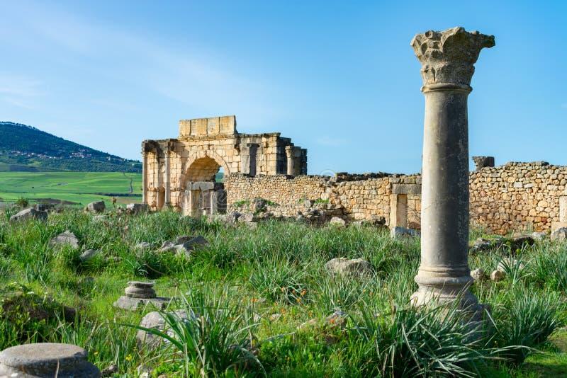 Uma única coluna e o arco de Caracalla em Roman Ruins de Volubilis em Marrocos imagens de stock royalty free