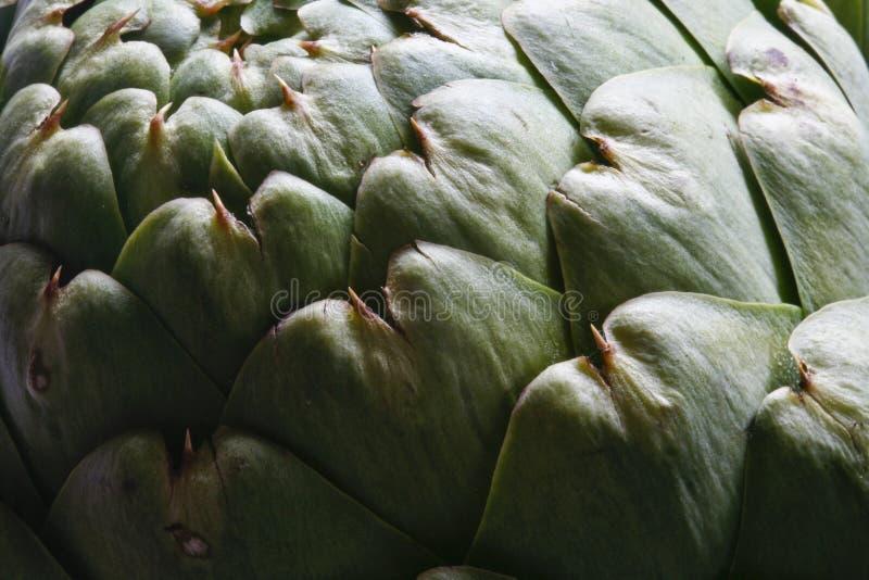 Uma alcachofra de Artsy imagem de stock