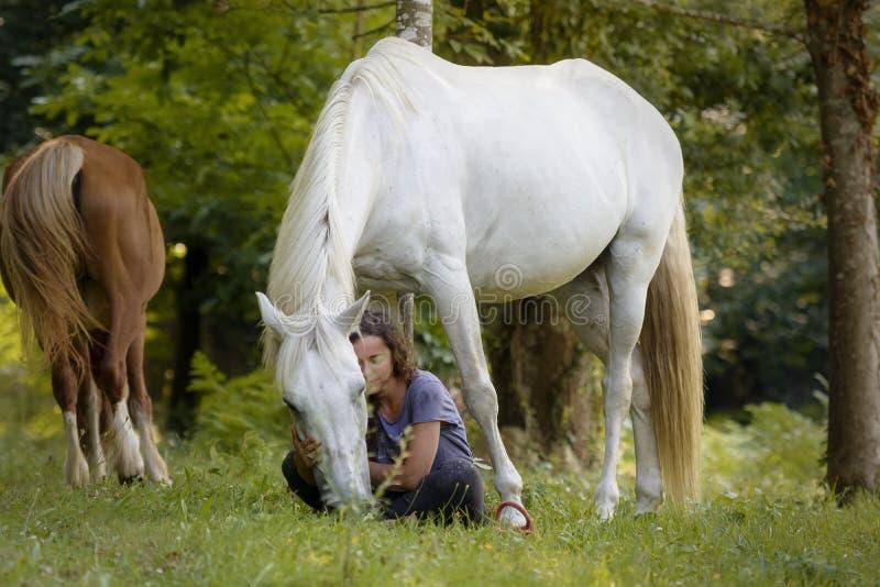 Uma amazona nova com seu cavalo branco que mostra à ligação têm agradecimentos ao adestramento natural em uma floresta em Ponteve fotografia de stock royalty free